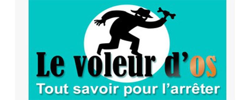 Evaluation de l'application Le Voleur d'Os par DEKRA Certification MEDAPPCARE