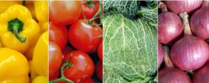 Nouvelle tarification BRC Food - DEKRA Certification