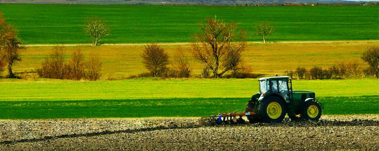 Agroalimentaire - DEKRA Certification